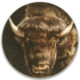 01. AMERICAN BISON, airbrush on canvas, 70'' diameter